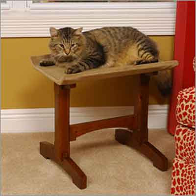 Single Seat Cat Furniture