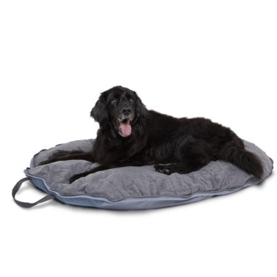 Classic Dog About Folding Pet Travel Bed