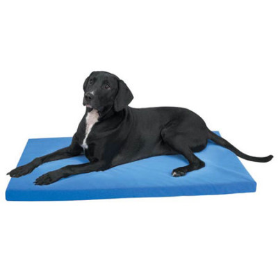 PetEdge Slumber Pet Memory Foam Dog Bed