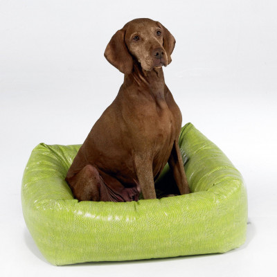 Bowsers Fashion Dutchie Pet Bed