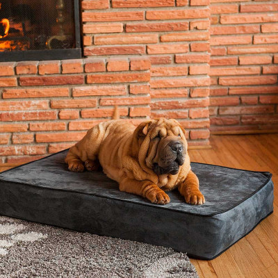 Snoozer Outlast® Dog Bed Sleep System - 5 In Thick