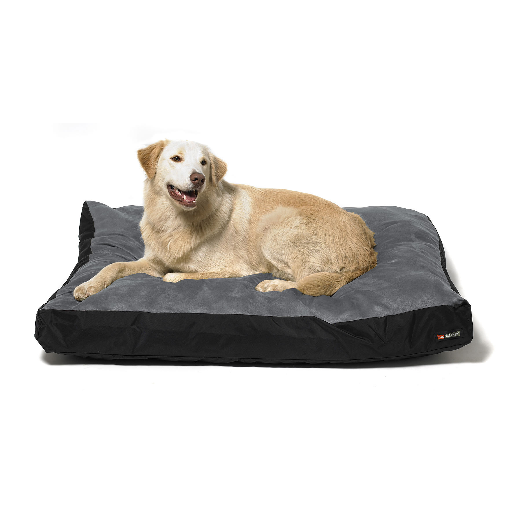 comfort with beds ideas ped indestructible bed large for chew pet tough proof supplies and clean also andersonesque dog decor