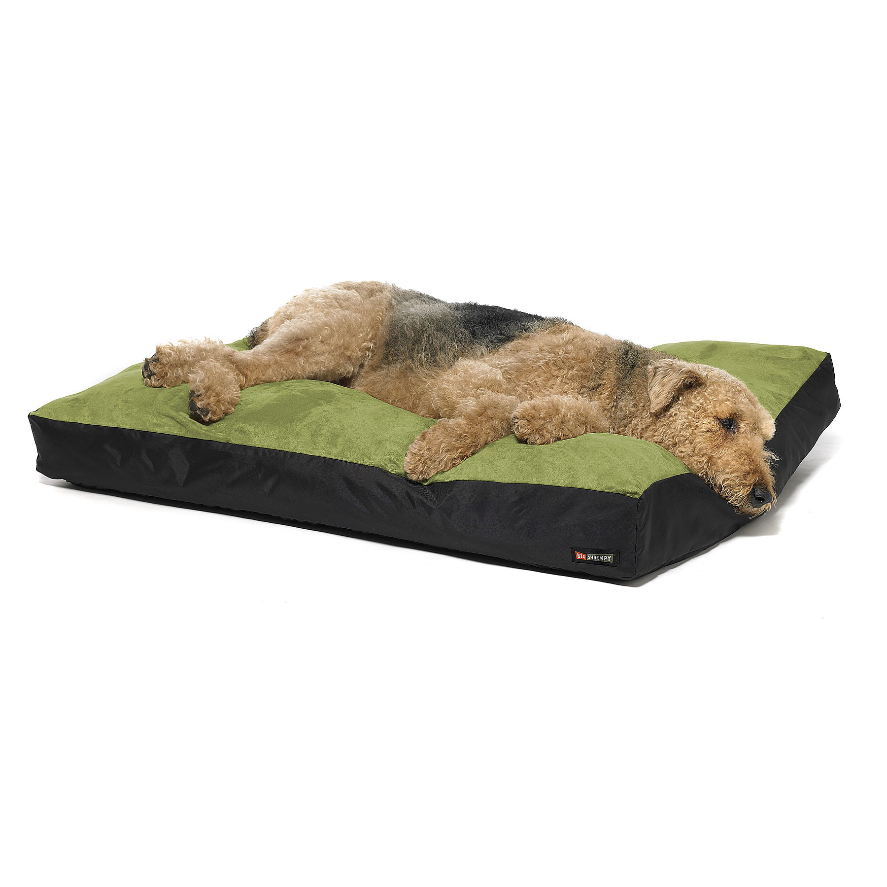 Big Shrimpy Original Dog Bed