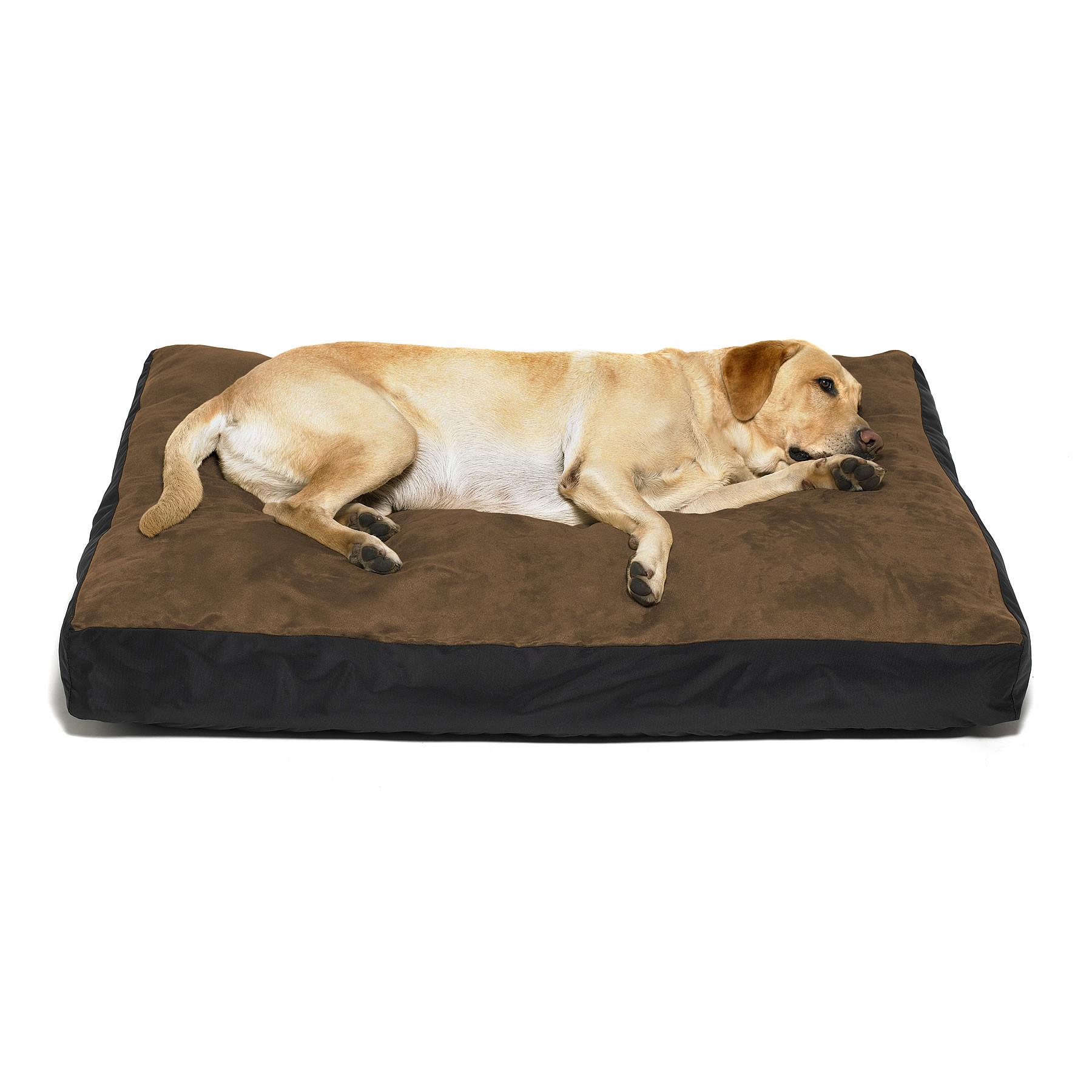 X Large Dog Bed Covers
