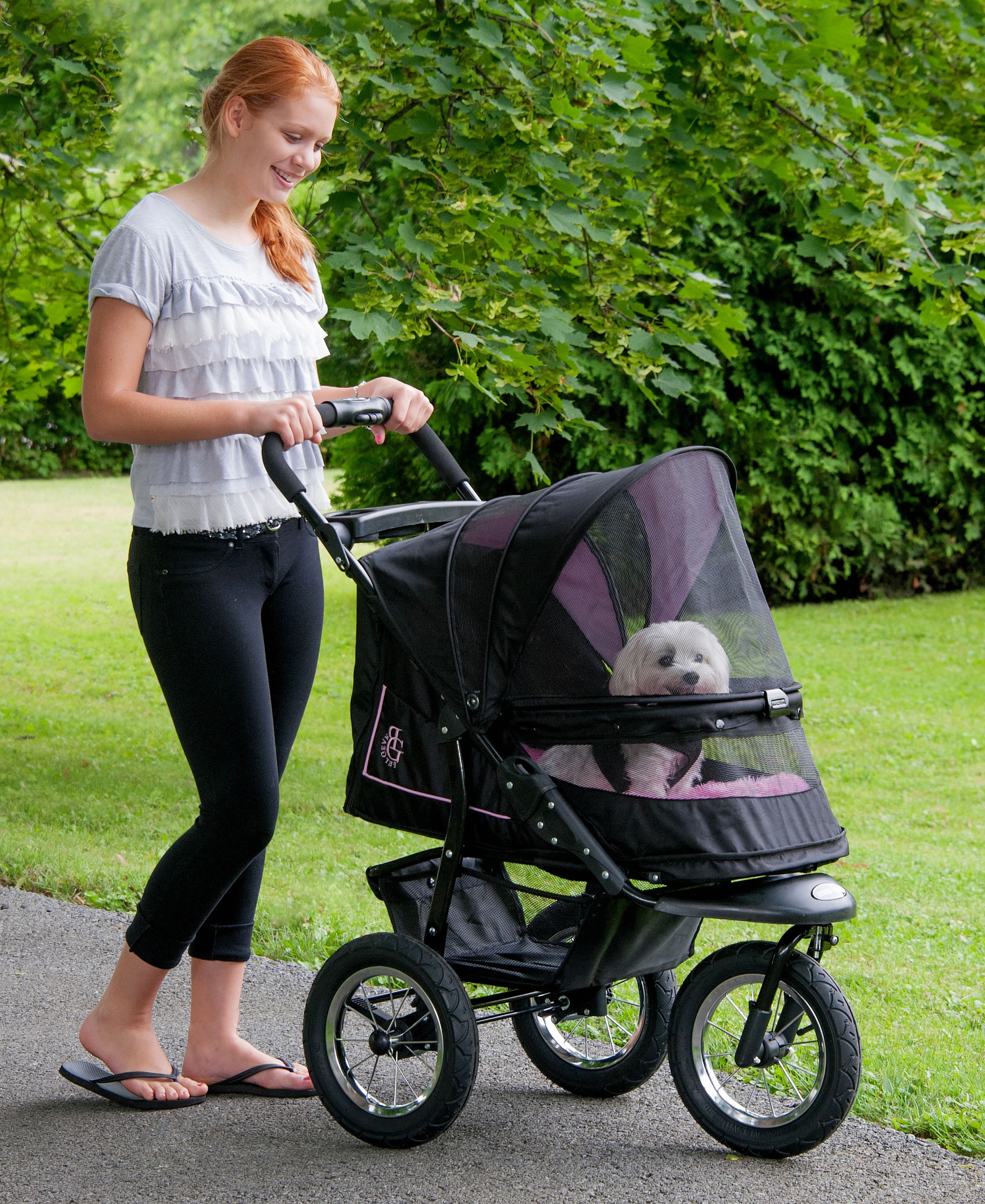 Large Dog Stroller Reviews