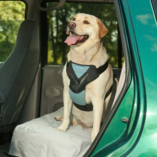 Bergan Travel Harness Blue Large