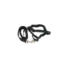 Premier Reflective Easy Walk Harness Petit / Small Black With 1/2 x 6 Leash - EWHREFHCP/SBLK