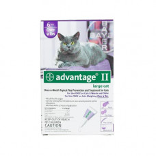 Advantage Flea Control for Cats and Kittens Over 9 lbs 6 Month Supply - PURPLE-20-6
