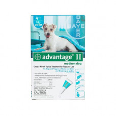 Advantage Flea Control for Dogs And Puppies 11-20 Lb 4 Month Supply - TEAL-20-4