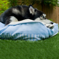 Play Artist Rectangular Bed - What Dogs Dream