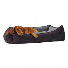 Bowsers Scoop Dog Bed