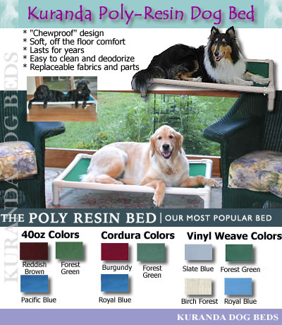 Wetting  on Chew Proof Dog Bed   Dog Collars And Supplies